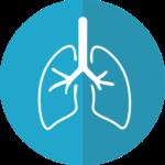 human organ icon